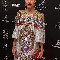Mexico, D.F. 08/07/2015. Sala Roberto Cantoral. Ceremonia de la 11 entrega  de los Premios Canacine, a lo mejor del cine mexicano. Cecilia Suarez.