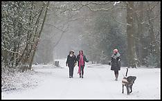 JAN 18 2013 Snowfall in London