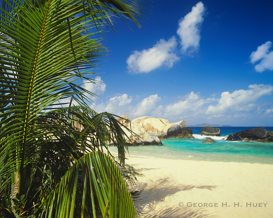 6202-1019 ~ Copyright: George H. H. Huey ~ The beach at the Baths, with palm tree. Virgin Gorda Island, British Virgin Islands.
