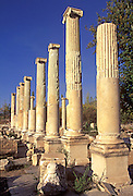 TURKEY, GREEK AND ROMAN Aphrodisias; columns of Tiberius Portico