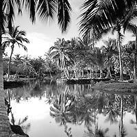 Kona Village Resort fish ponds.