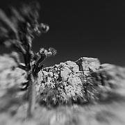 Joshua Tree Crumbling Rocks - Lensbaby - Infrared Black & White