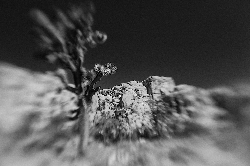 Joshua Tree Crumbling Rocks - Lensbaby - Infrared Black & White