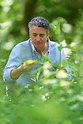 Dr. Markus Strauß, Experte für essbare Wildpflanzen