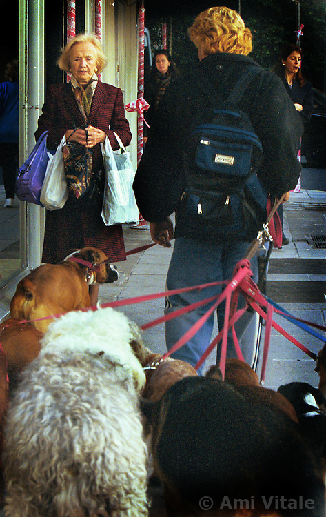 BUENOS AIRES, ARGENTINA:  A local dog walker walks several dogs on the streets of Buenos Aires.. (Photo by Ami Vitale)