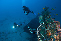 Divers exploring a deep unidentified wreck near Manokwari, West Papua, Indonesia.