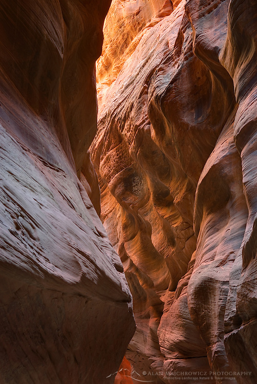Buckskin Gulch Paria Canyon-Vermilion Cliffs Wilderness Arizona