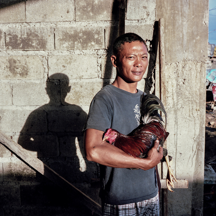 Marlon cradles his prized fighting rooster he named, Yolando, after the typhoon.