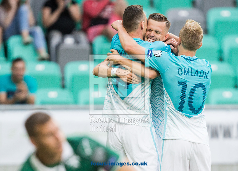 Milivoje Novakovic of Slovenia celebrates scoring the second goal during the 2018 FIFA World Cup Qualifying match at SRC Stozice, Ljubljana<br /> Picture by EXPA Pictures/Focus Images Ltd 07814482222<br /> 10/06/2017<br /> *** UK &amp; IRELAND ONLY ***<br /> <br /> EXPA-SLO-170610-0036.jpg