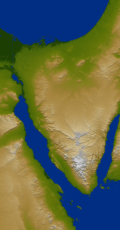 The Sinai Peninsula, located between Africa and Asia, is a result of those two continents pulling apart from each other. Earth's crust is cracking, stretching, and lowering along the two northern branches of the Red Sea, namely the Gulf of Suez, seen here on the west (left), and the Gulf of Aqaba, seen to the east (right). This color-coded shaded relief image shows the triangular nature of the peninsula, with the coast of the Mediterranean Sea forming the northern side of the triangle. The Suez Canal can be seen as the narrow vertical blue line in the upper left connecting the Red Sea to the Mediterranean.