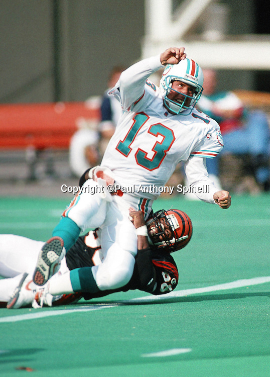 Miami Dolphins quarterback Dan Marino (13) gets tackled after throwing a pass during the NFL football game against the Cincinnati Bengals on Oct. 1, 1995 in Cincinnati. The Dolphins won the game 26-23. (©Paul Anthony Spinelli)