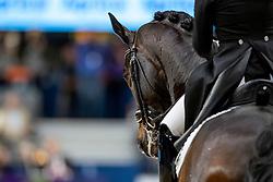BARBANÇON Morgan (FRA), Sir Donnerhall II OLD<br /> Göteborg - Gothenburg Horse Show 2019 <br /> FEI Dressage World Cup™ Final II<br /> Grand Prix Freestyle/Kür<br /> Longines FEI Jumping World Cup™ Final and FEI Dressage World Cup™ Final<br /> 06. April 2019<br /> © www.sportfotos-lafrentz.de/Stefan Lafrentz