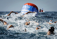 10 km. Women.European Championships Open Water Swimming 2012.Campionati Europei di nuoto di fondo 2012.Piombino (LI) - Italy  12-16 september.Day01 Sept.12.Photo G.Scala/Deepbluemedia.eu/Insidefoto