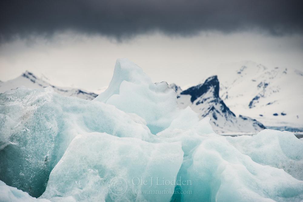 Ice in Hornsund, south in Svalbard