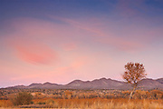 The first light of day turns the cirrus clouds over the Chupadera Mountains in New Mexico pastel pink. The highest of the mountains, located in Socorro County near the Bosque del Apache National Wildlife Refuge, is 6276 feet (1913 meters).