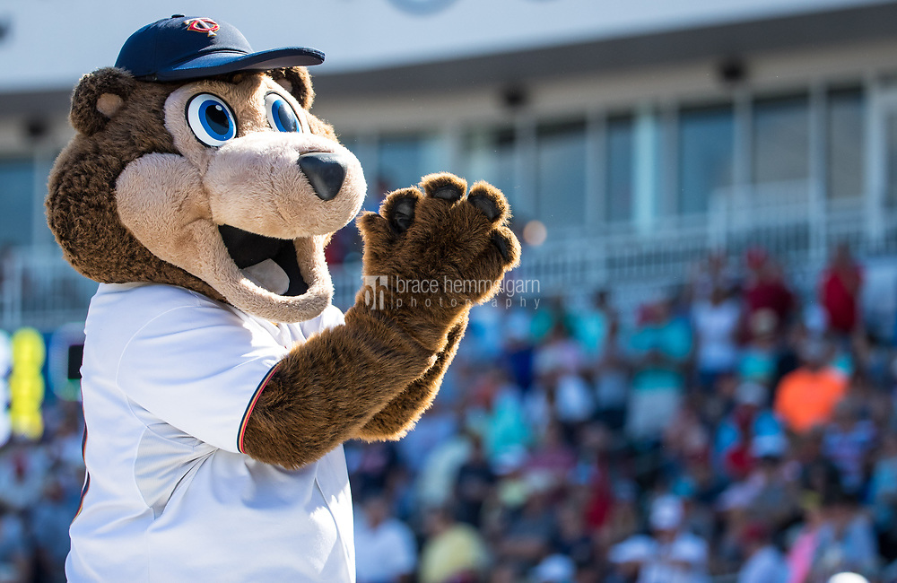 FORT MYERS, FL- FEBRUARY 26: Minnesota Twins mascot TC Bear against the Washington Nationals on February 26, 2017 at Hammond Stadium in Fort Myers, Florida. (Photo by Brace Hemmelgarn) *** Local Caption ***