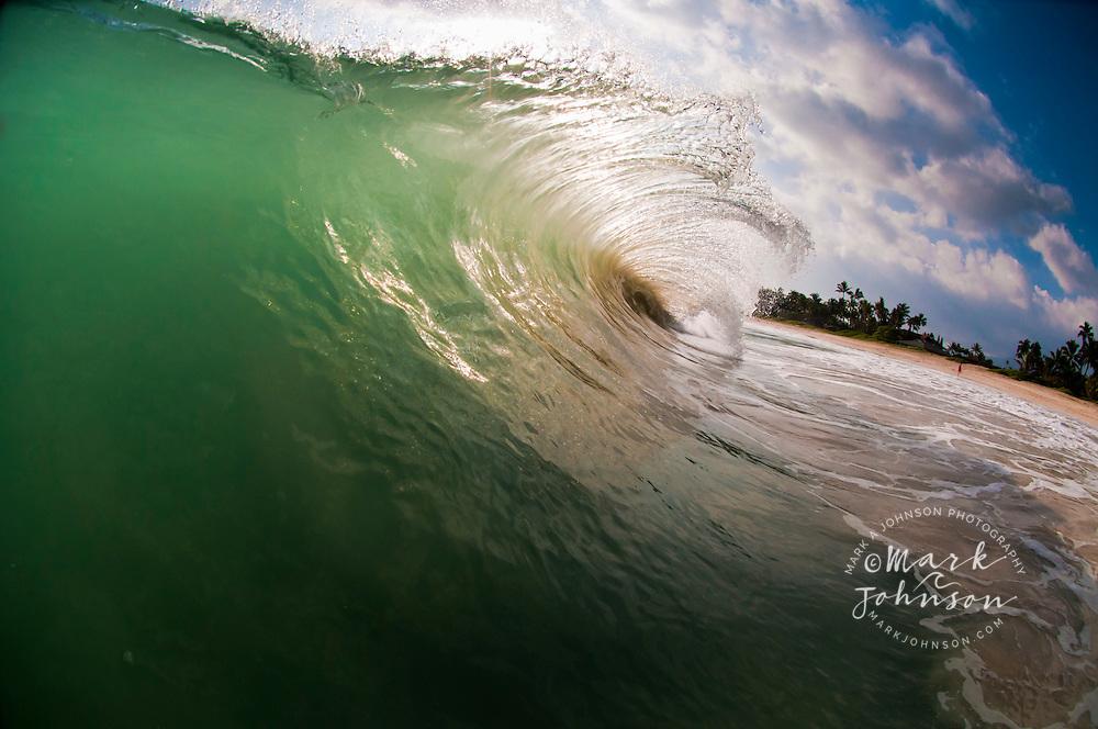 Breaking wave, Kailua Shorebreak, Oahu, Hawaii, USA