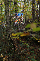 Mountain biker in woodland view through trees