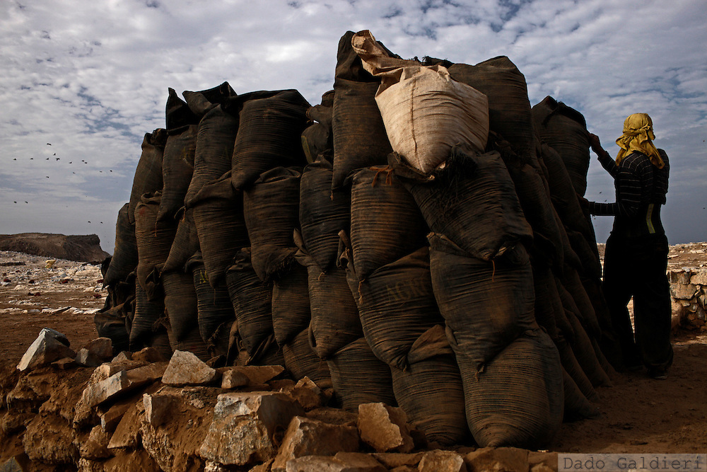 A miner piles plastic bags containing bird dung, known as guano in the Ballestas islands  in Peru, Oct. 9, 2011. Along the dry and magnificent Peruvian Pacific coast, 22 scattered islands are home to millions of migratory birds such as guanays, boobies and pelicans..Nesting in these  island for millennia their excreta has been used by ancient civilizations to fertilize Andean crops and sustain evolved societies. Now, being one of the finest organic fertilizers in the world they move an economy of around 10 billion dollars, considering the average price of 500 USD a ton, according to  Rural Agrarian Productive Development Program (Agrorural) .The bird dung, also known as guano, reached its greatest economic importance in the 19th century as a coveted resource being exported to the United States, England and France..But now  the country, being led by a leftist president, hopes to benefit mostly small farmers by boosting organic agriculture through these natural fertilizers.. (Photo Dado Galdieri)