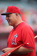 ANAHEIM, CA - MAY 17:  Manager Mike Scioscia #14 of the Los Angeles Angels of Anaheim smiles as he talks with fans during batting practice before the game against the Tampa Bay Rays at Angel Stadium on Saturday, May 17, 2014 in Anaheim, California. The Angels won the game in a 6-0 shutout. (Photo by Paul Spinelli/MLB Photos via Getty Images) *** Local Caption *** Mike Scioscia
