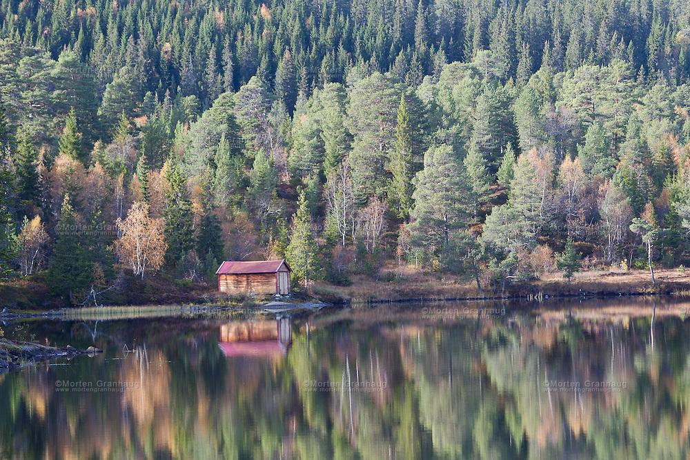Skjellbreia i Bymarka, Trondheim, oktober 2010..Bymarka er et skogsområde vest for Trondheim på 80 km². Den ligger på Byneshalvøya, og består hovedsakelig av Trondheim bymark, Leinstrandmarka og Bynesmarka..Området har et svært variert turterreng - fra tette granskoger via vekslene skog- og myrterreng til snaufjell over tregrensen.