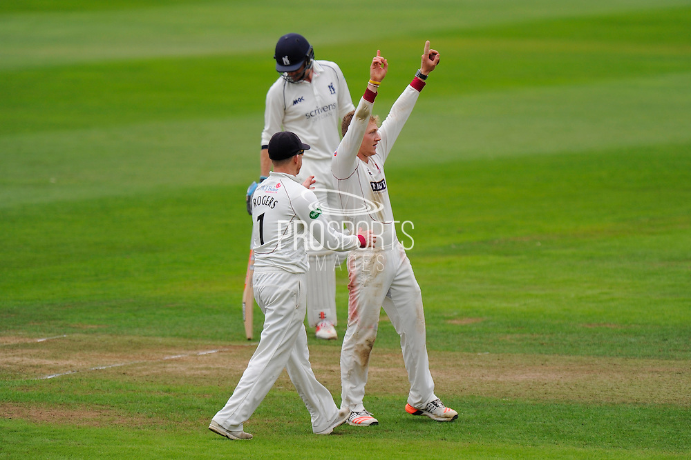Dom Bess of Somerset celebrates taking the wicket of Keith Barker of Warwickshire which is his 4th wicket off the inningson his debut in the County Championships during the Specsavers County Champ Div 1 match between Somerset County Cricket Club and Warwickshire County Cricket Club at the Cooper Associates County Ground, Taunton, United Kingdom on 6 September 2016. Photo by Graham Hunt.