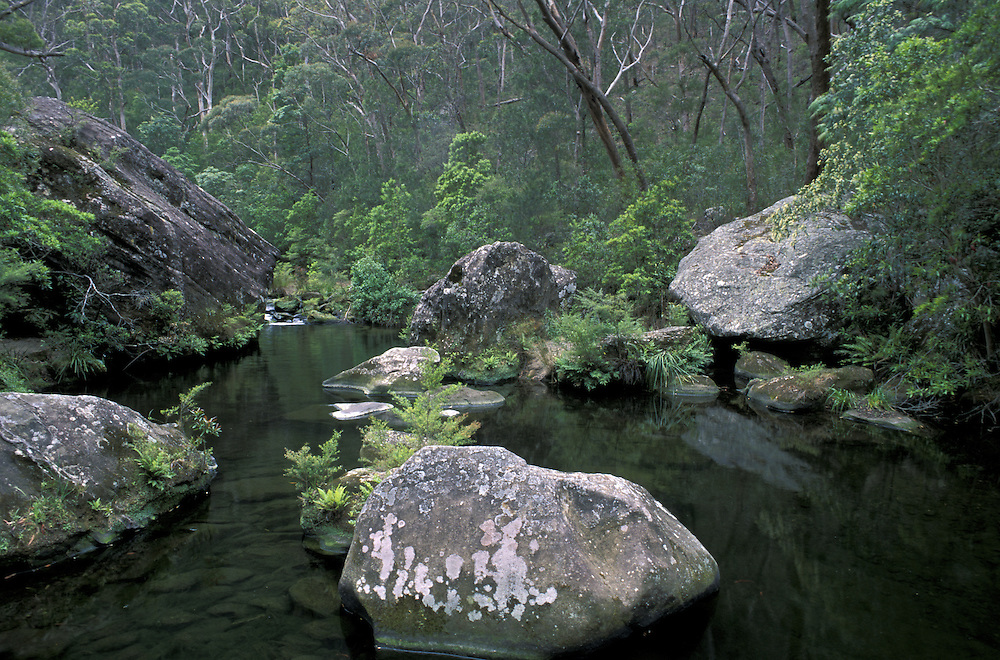 Grose River.Blue Mountains National Park.New South Wales.Australia