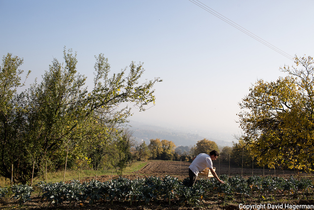 Filipo Laguzzi harvests vegetables from the gardens at  Birrificiao Agricole di Montcalieri.