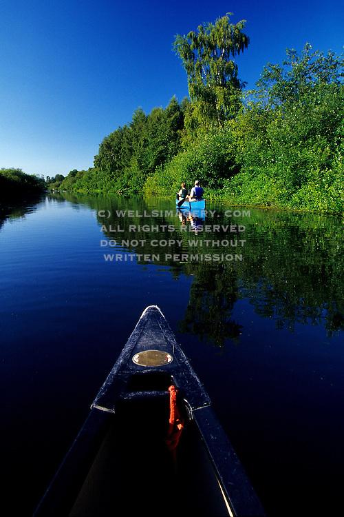Image of Mercer Slough Nature Park in Bellevue, Washington, Pacific Northwest, model released