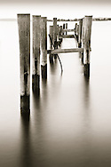 Old Dock in Moonlight, Maryland