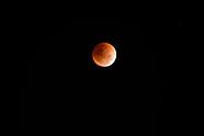 Blood Moon/Super moon