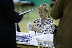 © Licensed to London News Pictures . 20/11/2014 . Kent , UK . A woman counting ballots at the counting hall , at Medway Park in Gillingham . The count for the Rochester and Strood by-election , following the defection of sitting MP Mark Reckless from Conservative to UKIP . Photo credit : Joel Goodman/LNP