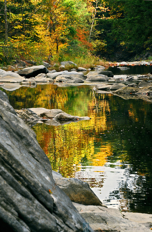 Autumn leaves reflecting in the Saxtons River at Gageville, Vermont