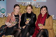 Aileen O'Connor, Aoife O'Sullivan and Kate Brown, at the Connacht Gold annual 'Have It All!' food, fashion and wellness event in the Galmont Hotel & Spa, Galway.<br /> Photo: James Connolly<br /> 29NOV18