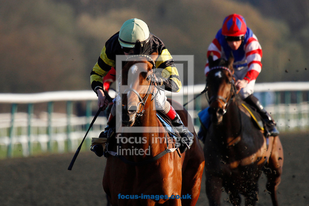 "Picture by John Hoy/Focus Images Ltd. 07583422396.24/03/12.Luke Morris riding Viking Storm wins the 5.10pm ""Bet at Blue Square Mobile Handicap"" at Lingfield Race Course, Surrey."