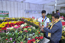 November 1, 2018 - Kathmandu, NP, Nepal - Nepalese people buying different varieties of flower showcased during floral expo in Jawalakhel, Lalitpur, Nepal on Thursday, November 01, 2018. (Credit Image: © Narayan Maharjan/NurPhoto via ZUMA Press)