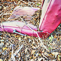 Red leather car seat removed from car lying amongst leaves