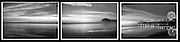 Santa Monica Bay, Pacific Park, Pier, B/W Triptych Photo