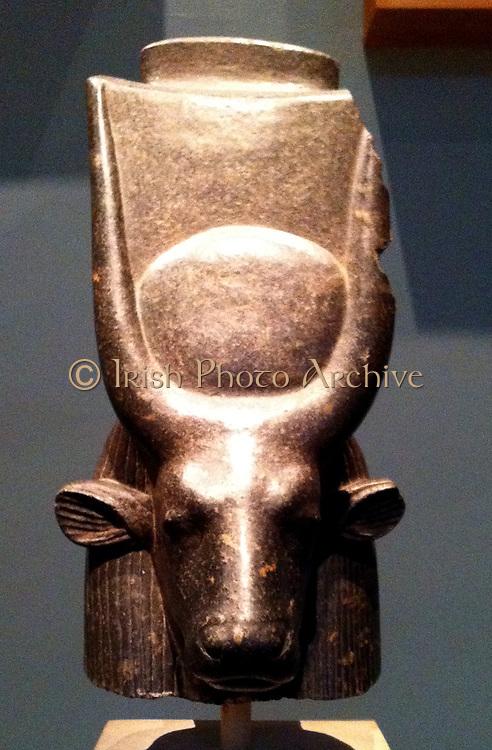 Head of a Cow Goddess (perhaps representing Hathor), Porphyrite Diorite stone. 18th Dynasty circa 1417-1379 BC