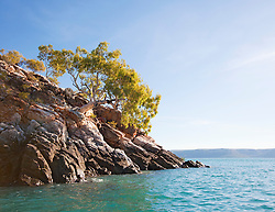 A single tree clings to rocks in Dugong Bay on the Kimberley coast.