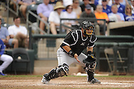 SURPRISE, AZ - MARCH 06:  Josh Phegley #36 of the Chicago White Sox catches against the Kansas City Royals on March 6, 2014 at The Ballpark in Surprise in Surprise, Arizona. (Photo by Ron Vesely)   Subject: Josh Phelgey