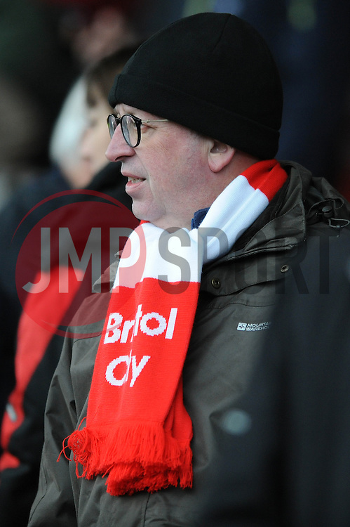 - Photo mandatory by-line: Dougie Allward/JMP - Mobile: 07966 386802 - 14/02/2015 - SPORT - Football - Bristol - Ashton Gate - Bristol City v Sheffield United - Sky Bet League One