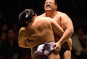 Goeido (left) and Tosanoumi compete in the first round of Day 2 of Grand Sumo Tournament Los Angeles 2008, Los Angeles Sports Arena, Los Angeles, California