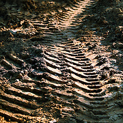 Tracks from heavy machinery tires are marked in the ground.
