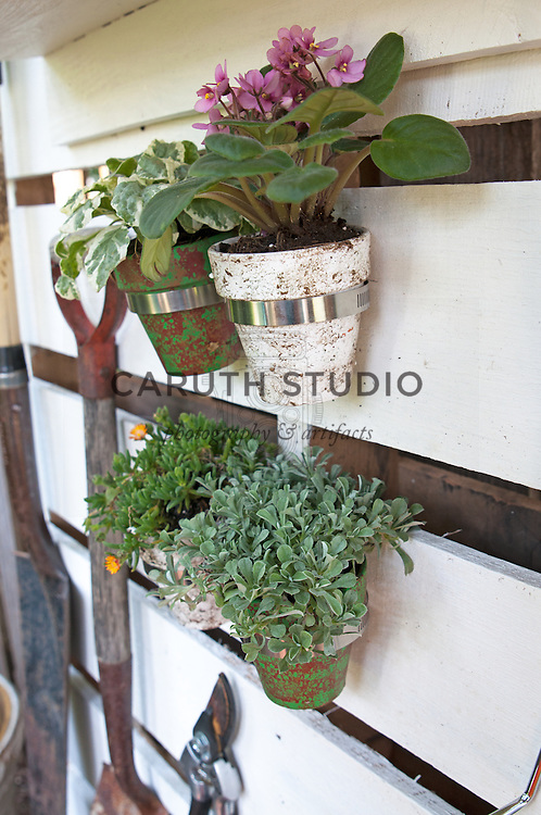 Shipping pallet garden tool storage: potted plants in radiator hose clamps