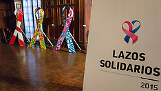 Presentacion Lazos Solidarios 2015