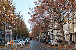 Autumn colours on Hufelandstrasse in Prenzlauer Berg, Berlin Germany