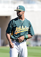 PHOENIX, AZ - FEBRUARY 23:  Chris Young #25 of the Oakland Athletics warms up prior to the spring training game against the Milwaukee Brewers at Maryvale Baseball Park on February 23, 2013 in Phoenix, Arizona.  (Photo by Jennifer Stewart/Getty Images) *** Local Caption *** Chris Young