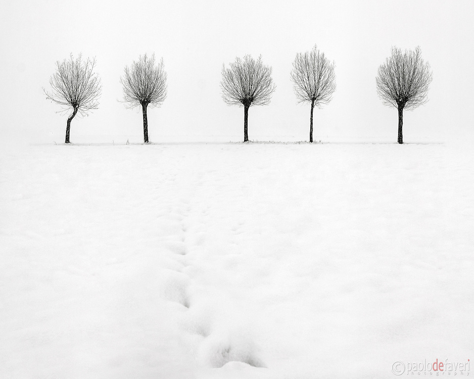 Contained in galleries black and white landscape photography snow in the ground and hazy atmosphere are just the best conditions for highly graphical and