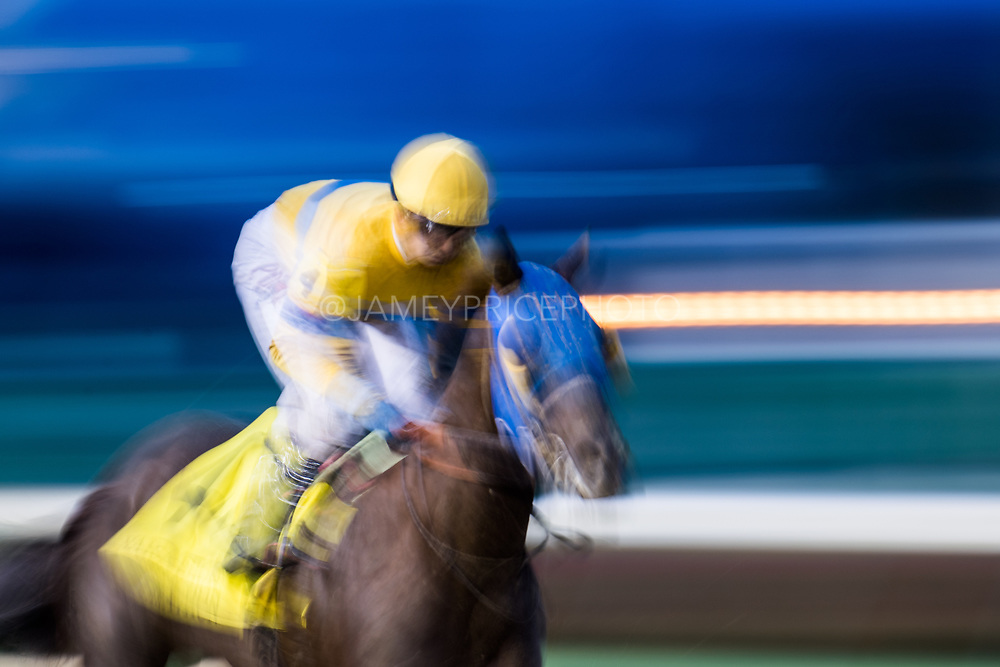 November 1-3, 2018: Breeders' Cup Horse Racing World Championships. Finglass and jockey Corey Lanerie<br /> gallop past the finish in the Marathon Stakes race